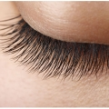 Silk Eyelash Experts